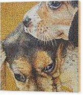 Beagle Puppies Wood Print by Judy Skaltsounis