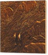 Bear Entrance Doors At Taprock Wood Print