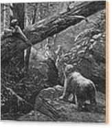 Bear Hunt, 1876 Wood Print by Granger