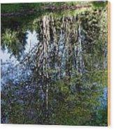 Bear River Reflection Wood Print