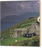Beara Peninsula, County Cork, Ireland Wood Print