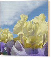 Bearded Iris Flowers Art Prints Floral Irises Wood Print
