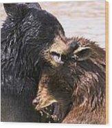 Bears In Water Wood Print