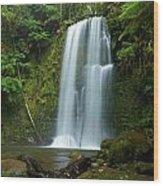 Beauchamp Falls Wood Print