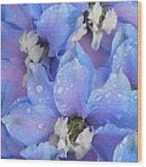 Beautiful Blue Flowers Wood Print