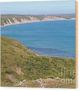 Beautiful Coastline Of Point Reyes California . 7d16050 Wood Print by Wingsdomain Art and Photography