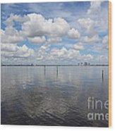 Beautiful Day In Tampa Wood Print
