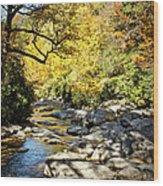 Beautiful Fall Scene Wood Print