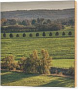 Beautiful Landscape With Trees And Field Wood Print