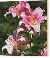 Beautiful Lilys Wood Print