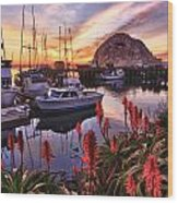 Beautiful Morro Bay Wood Print