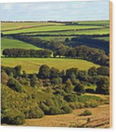 Beautiful Somerset Wood Print
