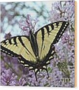 Beautiful Swallowtail Wood Print