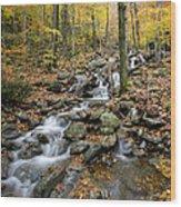 Beautiful Vermont Scenery 16 Wood Print
