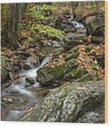 Beautiful Vermont Scenery 18 Wood Print