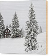 Beautiful Winter Landscape With Trees And House Wood Print