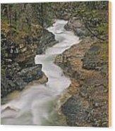 Beauty Creek, Banff National Park Wood Print
