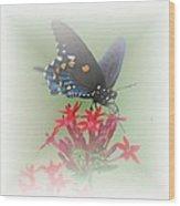 Beauty Flies Wood Print