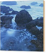 Beauty In The Ebb And Flow Wood Print