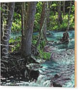 Beauty In The Sticks Wood Print