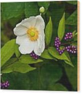 Beautyberry And Anemone 2 Wood Print