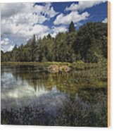 Beaver Lodge Wood Print
