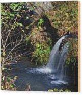 Bedlam Farm 8349 Wood Print