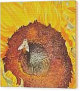 Bee And Sunflowers Wood Print