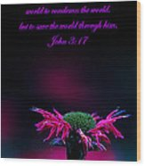 Bee Baum John 3 17 Wood Print