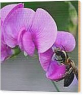Bee In The Pink - Greeting Card Wood Print