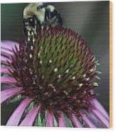 Bee Life 1 Wood Print
