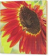 Bee On A Sunflower Wood Print