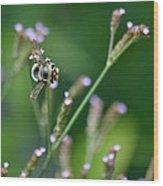 Bee On End Wood Print