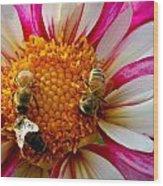 Bee Time Wood Print
