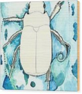 Beetle Swim Wood Print