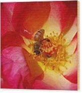 Beetobee Wood Print