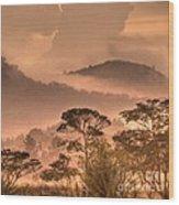Before Sunset Wood Print