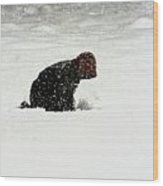 Beginning Of A Snow Man Wood Print