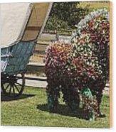 Begonia Horse Wood Print
