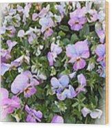 Begonias In Bloom Wood Print
