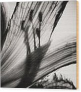 Behind The Petals Black And White Wood Print