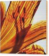 Behind The Petals Wood Print