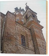 Bell Tower Of Our Lady Of Guadalupe Wood Print