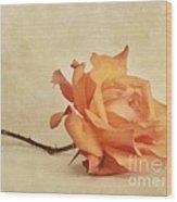 Bellezza Wood Print