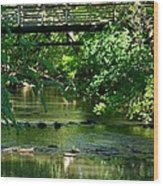 Below The Bridge Is Another World Wood Print