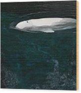 Beluga Impressions 2 Wood Print