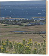 Bembridge Harbour And The Solent Wood Print