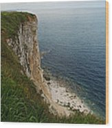 Bempton Cliffs 4 Wood Print