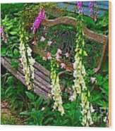 Bench Among The Foxgloves Wood Print