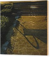 Bench And Shadow Wood Print